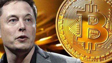 Elon Musk & Bitcoin