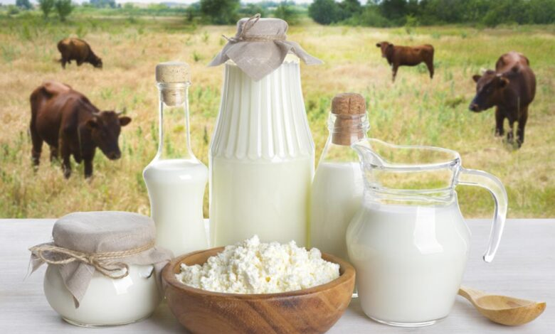 Chinese Etrepreneurs interested in investing in buffalo milk sector